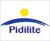 Pidilite-Building-Bonds